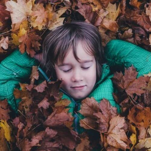 Child Sleeping In Leaves